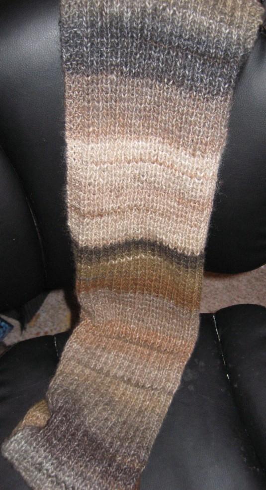 tarasscarf